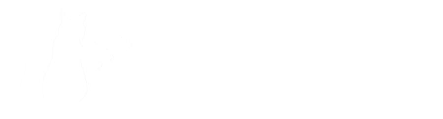 Phaser Cat